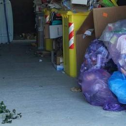 Un hashtag per la raccolta differenziata  «E foto trappole per chi lascia i rifiuti»