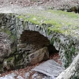 """Il """"Larice bruciato"""" e il ponte romano  Doppio intervento a misura di bicicletta"""