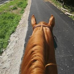 A Introbio l'asfalto fa imbizzarrire i cavalieri  «Restituiteci lo sterrato sull'ippovia»
