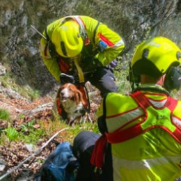 Esino, era disperso sul Cainallo  Il cane Paride salvato dai pompieri