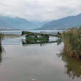 Castagnole letali nel lago di Annone  Oggi orna il battello spazzino